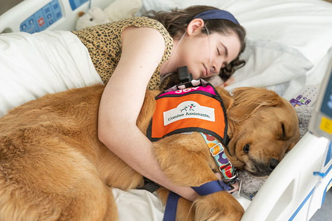 Hospital dog Agnes with a patient