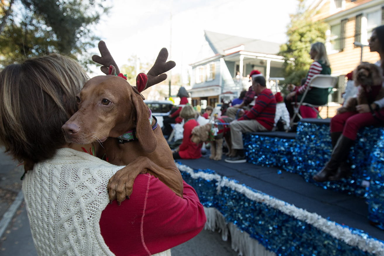 A woman holds her dog during the Angel Tree Parade